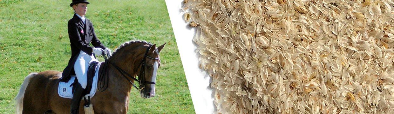 Loppefrøskaller til heste i fødevarekvalitet