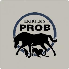 Ekholms Prob